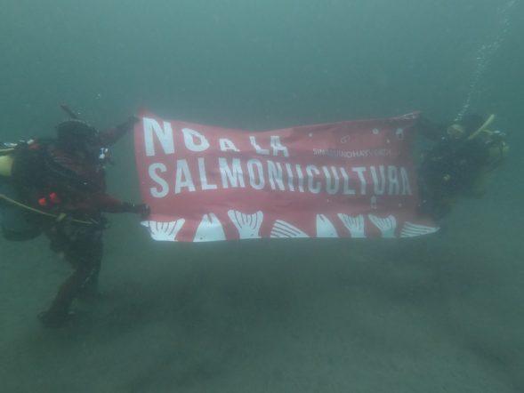 Salmon Farming, Argentina