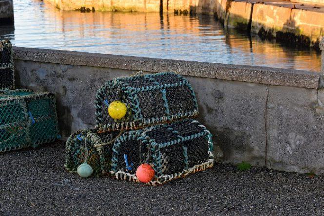 creel fishermen, creels, pots