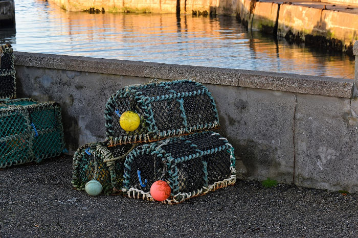 creel fishermen, creel, creels, pots, SCFF, Marine Scotland, fisheries, fishing