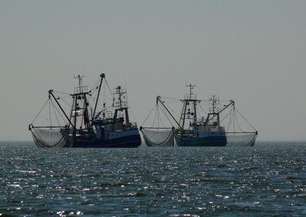 fishing, trawling, boat, MPA