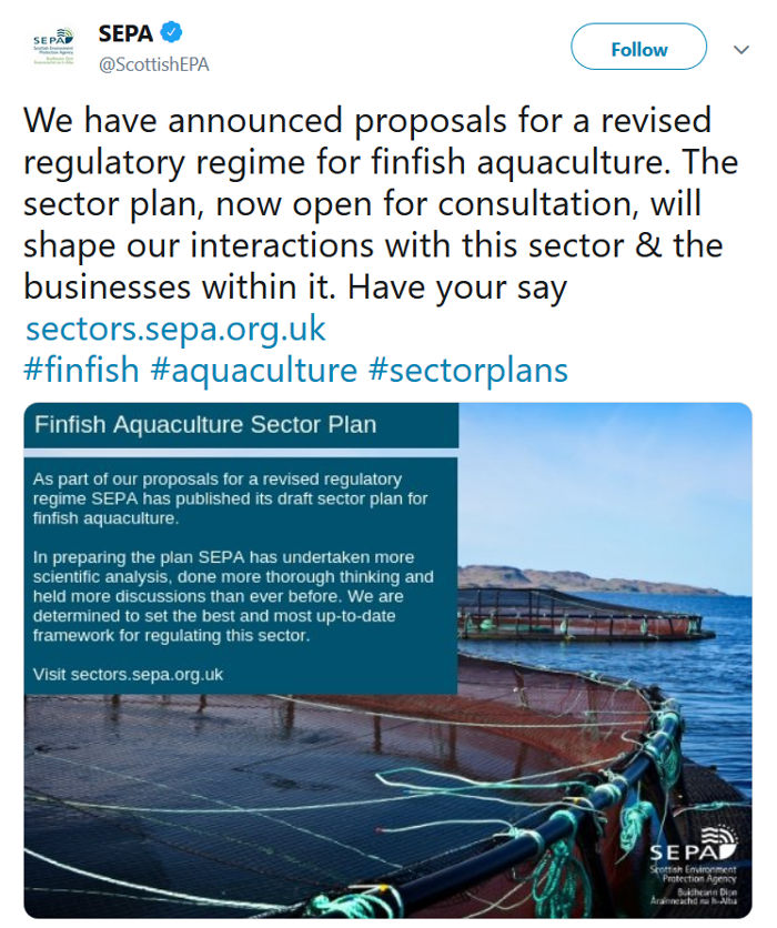 SEPA consultation salmon farming