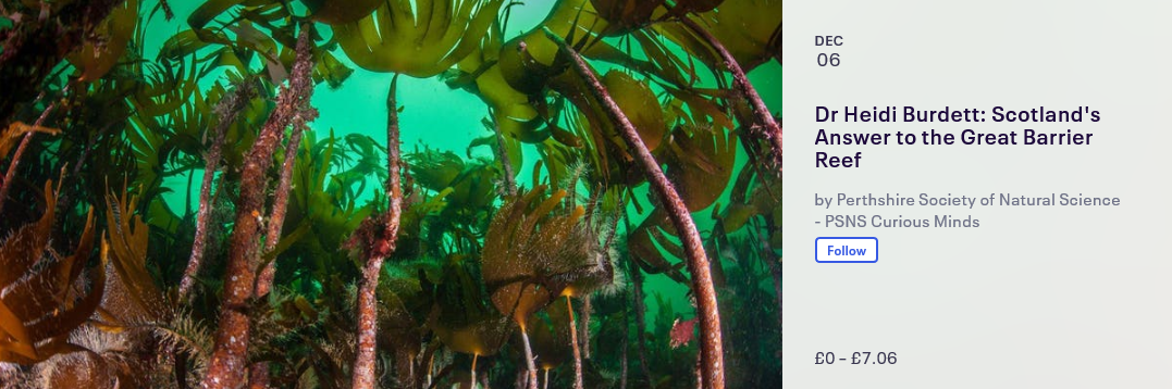 Scotland's Answer to the Great Barrier Reef