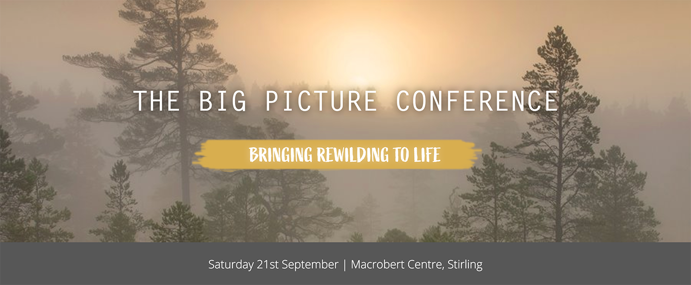The Big Picture Conference: Bringing Rewilding to Life