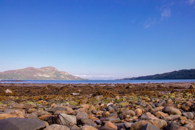 Holy Isle View