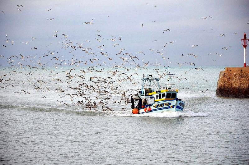 vessel tracking boat fishing