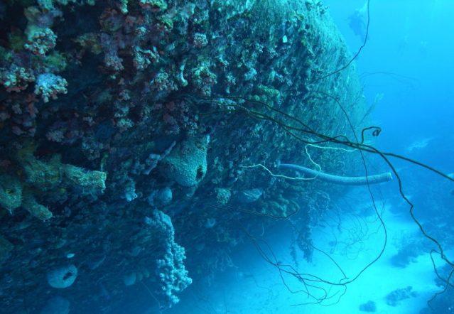 Orkney Shipwreck Scapa Flow